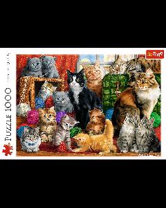 Trefl 10555 Feline Meeting 1000 piece