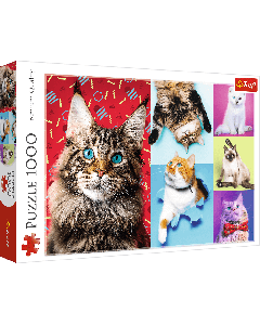 Trefl 10591 Happy Cats 1000 piece
