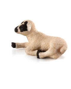 Animal Planet 387060  Black Faced Lamb Lying Down
