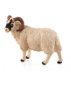Animal Planet 387081 Black Faced Sheep Ram