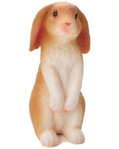 Animal Planet 387141  Rabbit Sitting