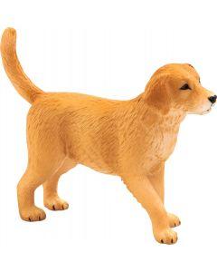 Animal Planet 387205  Golden Retriever Pup
