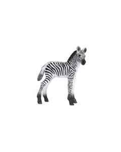 Animal Planet 387394  Zebra Foal